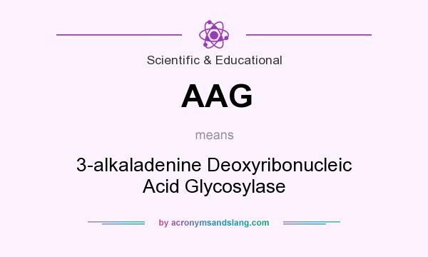 What does AAG mean? It stands for 3-alkaladenine Deoxyribonucleic Acid Glycosylase