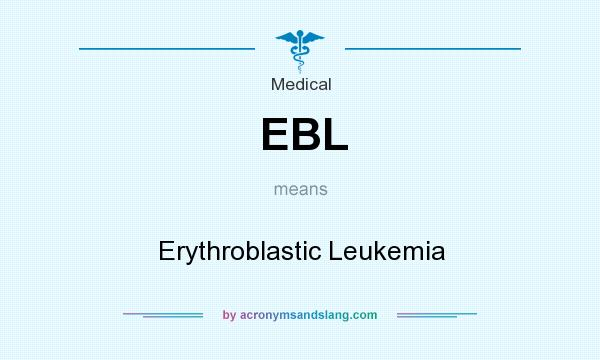 What does EBL mean? It stands for Erythroblastic Leukemia