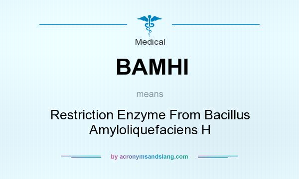 What does BAMHI mean? It stands for Restriction Enzyme From Bacillus Amyloliquefaciens H