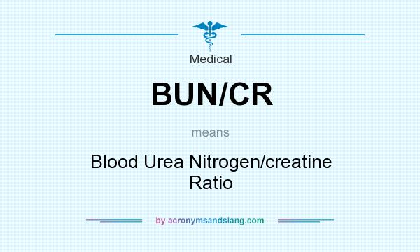 What does BUN/CR mean? It stands for Blood Urea Nitrogen/creatine Ratio