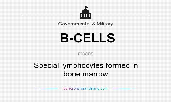 What does B-CELLS mean? It stands for Special lymphocytes formed in bone marrow