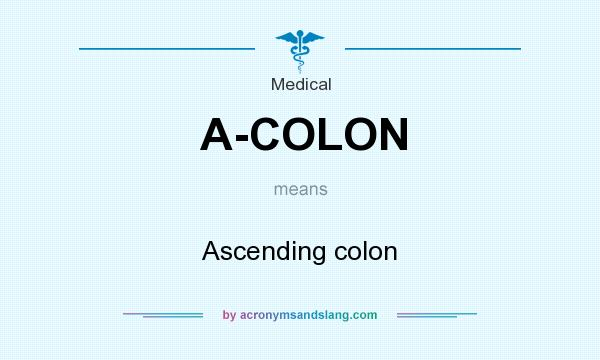 What does A-COLON mean? It stands for Ascending colon