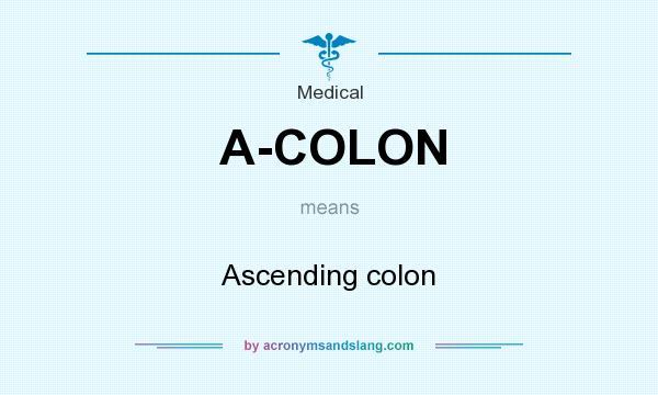 What does A-COLON mean? It stands for Ascending colon