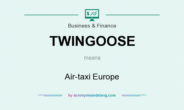 What does TWINGOOSE mean? It stands for Air-taxi Europe