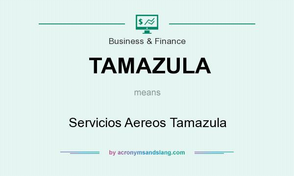 What does TAMAZULA mean? It stands for Servicios Aereos Tamazula