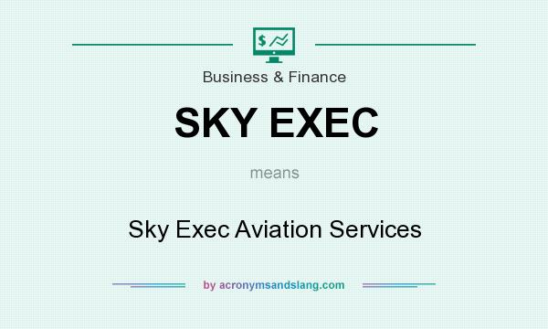 What does SKY EXEC mean? It stands for Sky Exec Aviation Services