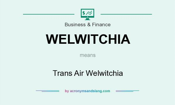 What does WELWITCHIA mean? It stands for Trans Air Welwitchia