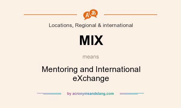 What does MIX mean? It stands for Mentoring and International eXchange