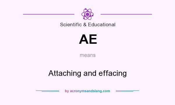 What does AE mean? It stands for Attaching and effacing