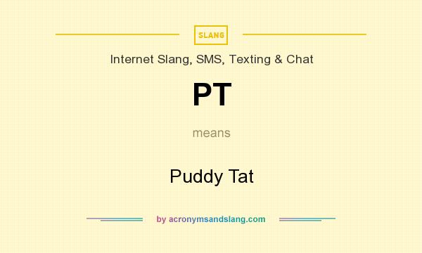 what does pt stand for in texting