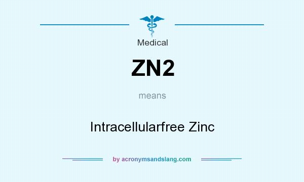 What does ZN2 mean? It stands for Intracellularfree Zinc