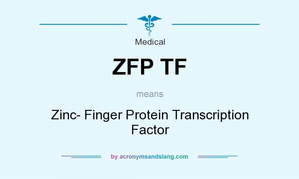 What does ZFP TF mean? It stands for Zinc- Finger Protein Transcription Factor