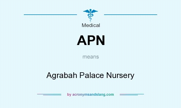 What does APN mean? It stands for Agrabah Palace Nursery