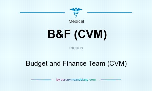 What does B&F (CVM) mean? It stands for Budget and Finance Team (CVM)