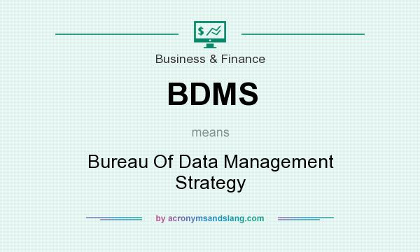 What does BDMS mean? It stands for Bureau Of Data Management Strategy