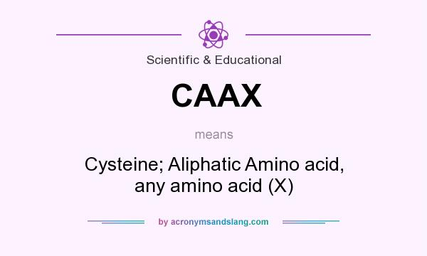 What does CAAX mean? It stands for Cysteine; Aliphatic Amino acid, any amino acid (X)