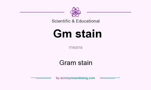 What Is Gm >> What Does Gm Stain Mean Definition Of Gm Stain Gm Stain