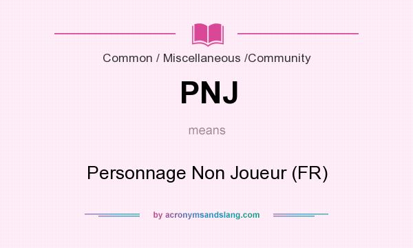 What does PNJ mean? It stands for Personnage Non Joueur (FR)