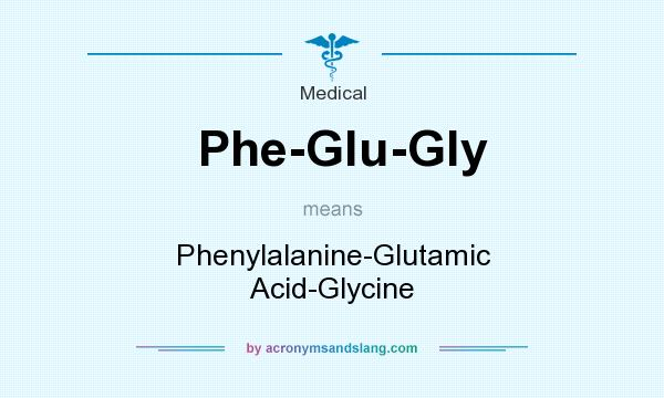 What does Phe-Glu-Gly mean? It stands for Phenylalanine-Glutamic Acid-Glycine