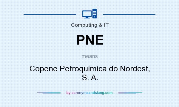What does PNE mean? It stands for Copene Petroquimica do Nordest, S. A.