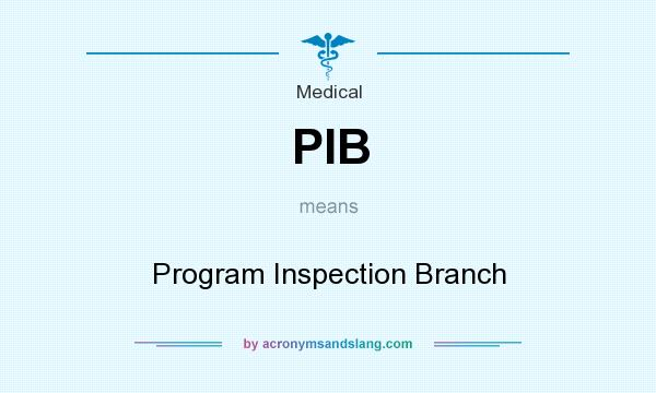 What does PIB mean? It stands for Program Inspection Branch