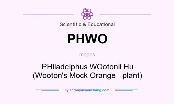 What does PHWO mean? It stands for PHiladelphus WOotonii Hu (Wooton`s Mock Orange - plant)