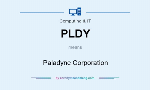 What does PLDY mean? It stands for Paladyne Corporation