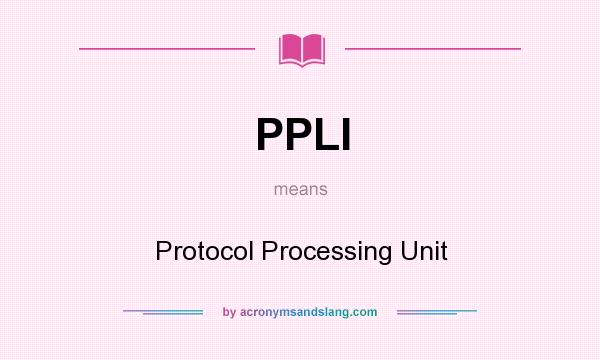 What does PPLI mean? It stands for Protocol Processing Unit