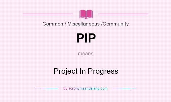 What does PIP mean? It stands for Project In Progress
