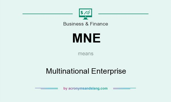What does MNE mean? It stands for Multinational Enterprise