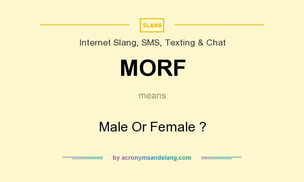 What does MORF mean? It stands for Male Or Female ?