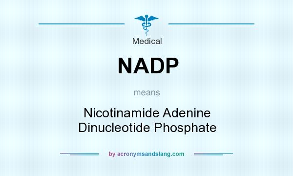 What does NADP mean? It stands for Nicotinamide Adenine Dinucleotide Phosphate
