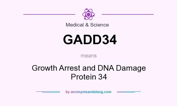 What does GADD34 mean? It stands for Growth Arrest and DNA Damage Protein 34