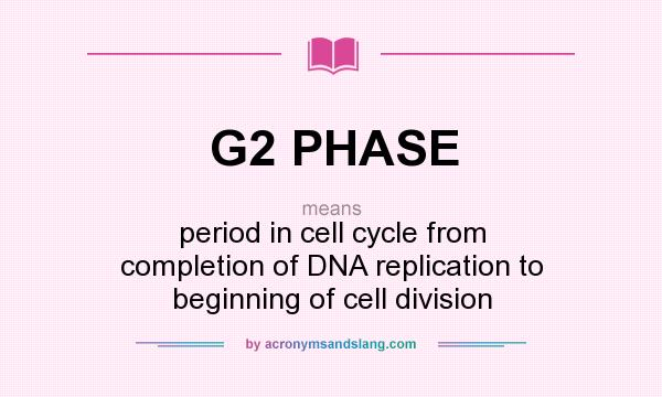 What does G2 PHASE mean? It stands for period in cell cycle from completion of DNA replication to beginning of cell division