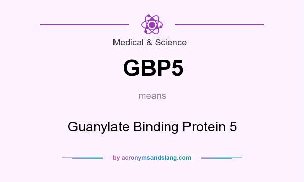 What does GBP5 mean? It stands for Guanylate Binding Protein 5