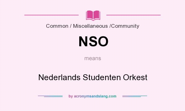 What does NSO mean? It stands for Nederlands Studenten Orkest