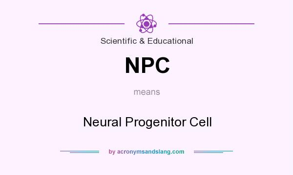 What does NPC mean? It stands for Neural Progenitor Cell
