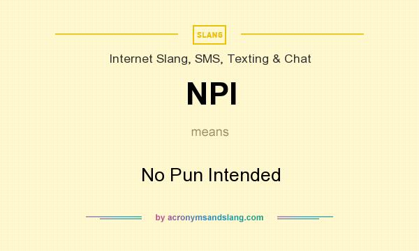 What does NPI mean? It stands for No Pun Intended