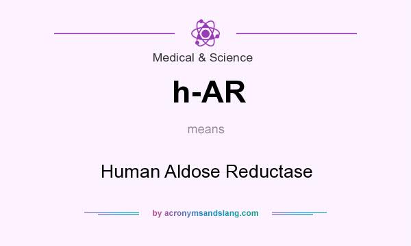 What does h-AR mean? It stands for Human Aldose Reductase