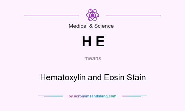 What does H E mean? It stands for Hematoxylin and Eosin Stain