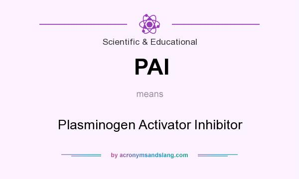 What does PAI mean? It stands for Plasminogen Activator Inhibitor