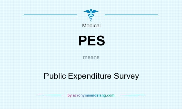 What does PES mean? It stands for Public Expenditure Survey