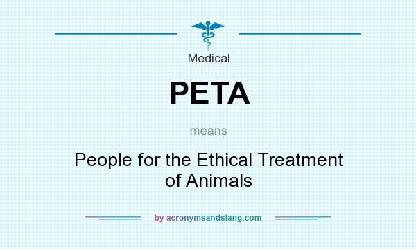 an overview of the people for the ethical treatment of animals Evidence of impact summary: the number of people who leave their animals and their and the president of people for the ethical treatment of animals.