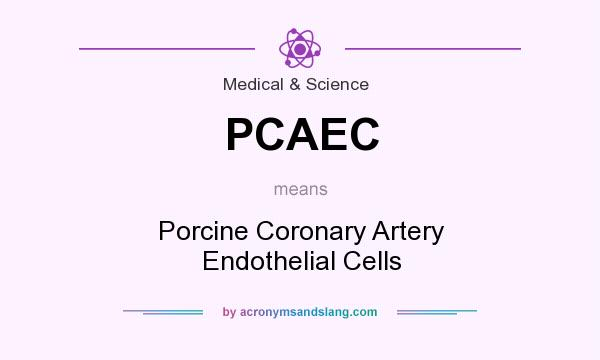 What does PCAEC mean? It stands for Porcine Coronary Artery Endothelial Cells