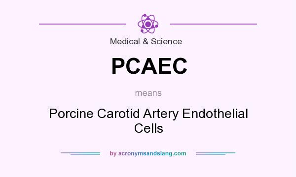 What does PCAEC mean? It stands for Porcine Carotid Artery Endothelial Cells