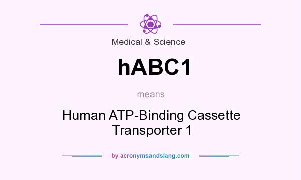 What does hABC1 mean? It stands for Human ATP-Binding Cassette Transporter 1