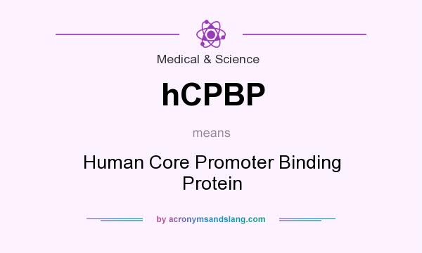 What does hCPBP mean? It stands for Human Core Promoter Binding Protein
