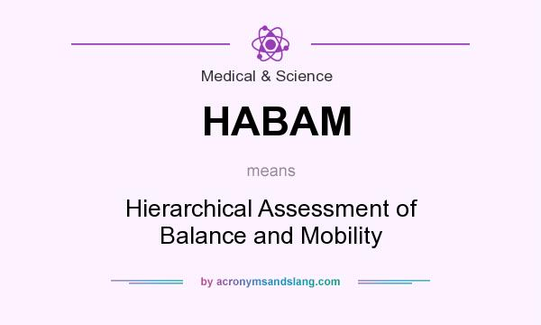 What does HABAM mean? It stands for Hierarchical Assessment of Balance and Mobility