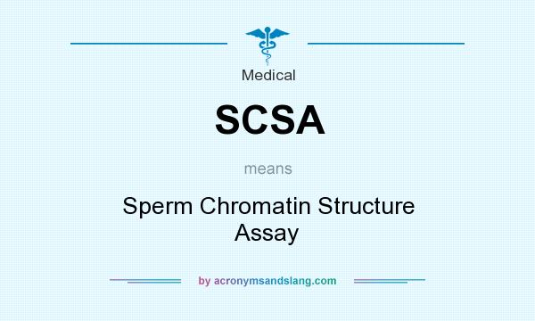 Sperm chromatic structure assay