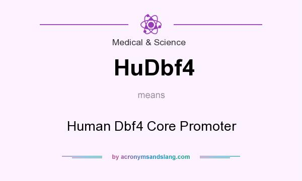 What does HuDbf4 mean? It stands for Human Dbf4 Core Promoter